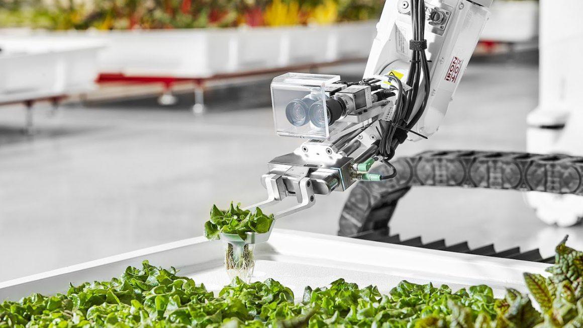 ربات کشاورز