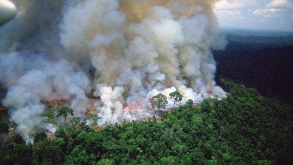 آمازون در حال سوختن است: بیسابقهترین آتش سوزی جنگلهای آمازون در برزیل