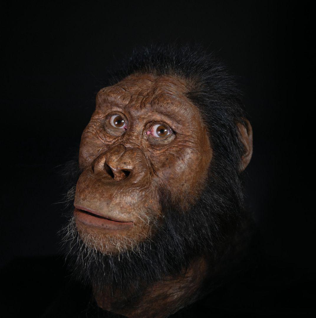 تصویر ساخته شده از جمجمه 3.8 میلیون ساله