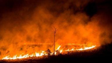 آتش سوزیهای آمازون