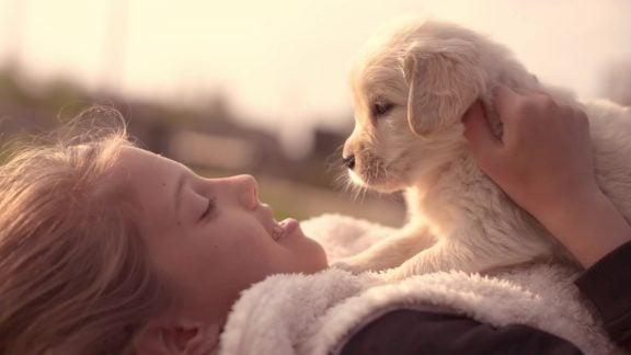 بیماریهای زئونوز: مواردی که از حیوانات به خصوص سگ و گربه به انسانها منتقل میشوند